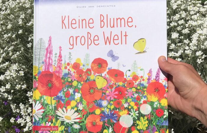 Kinderbuch Kleine Blume, große Welt