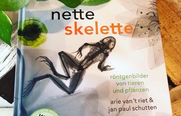 Kinderbuch Nette Skelette